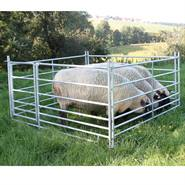 Set Steckfix Hurdle, schapen paneel, paneelhekl met poort 1,83 x 0,92 meter, verzinkt