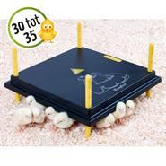80374-1-AS-Hoogwaardige-verwarmingsplaat-voor-kuikens.jpg