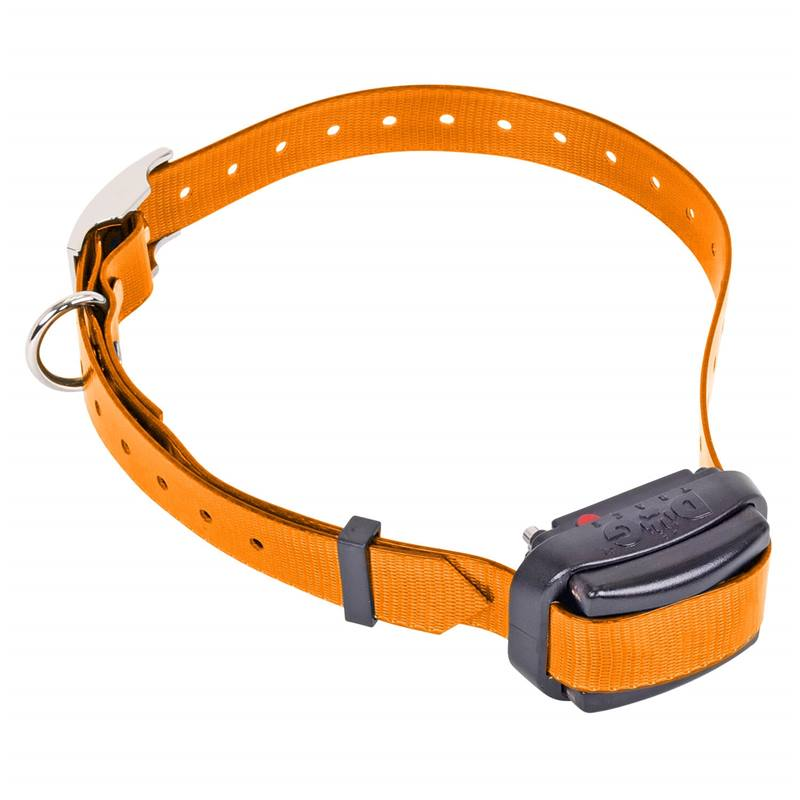 24345-1-dogtrace-d-control-professional-mini-ontvangerhalsband.jpg