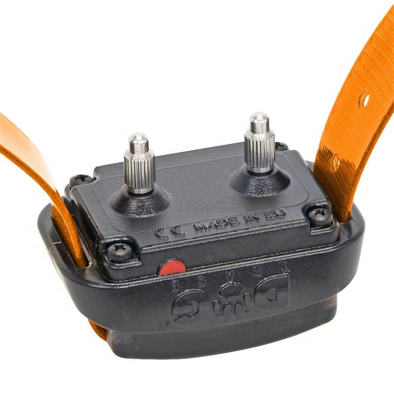 24345-3-dogtrace-d-control-professional-mini-ontvangerhalsband.jpg
