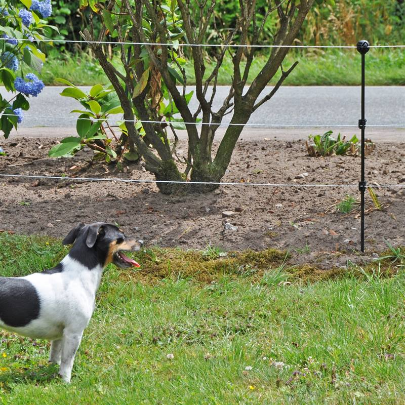 42555-Sicherheit-fuer-Haustiere-Kleintiere-sicherer-Hundezaun.jpg