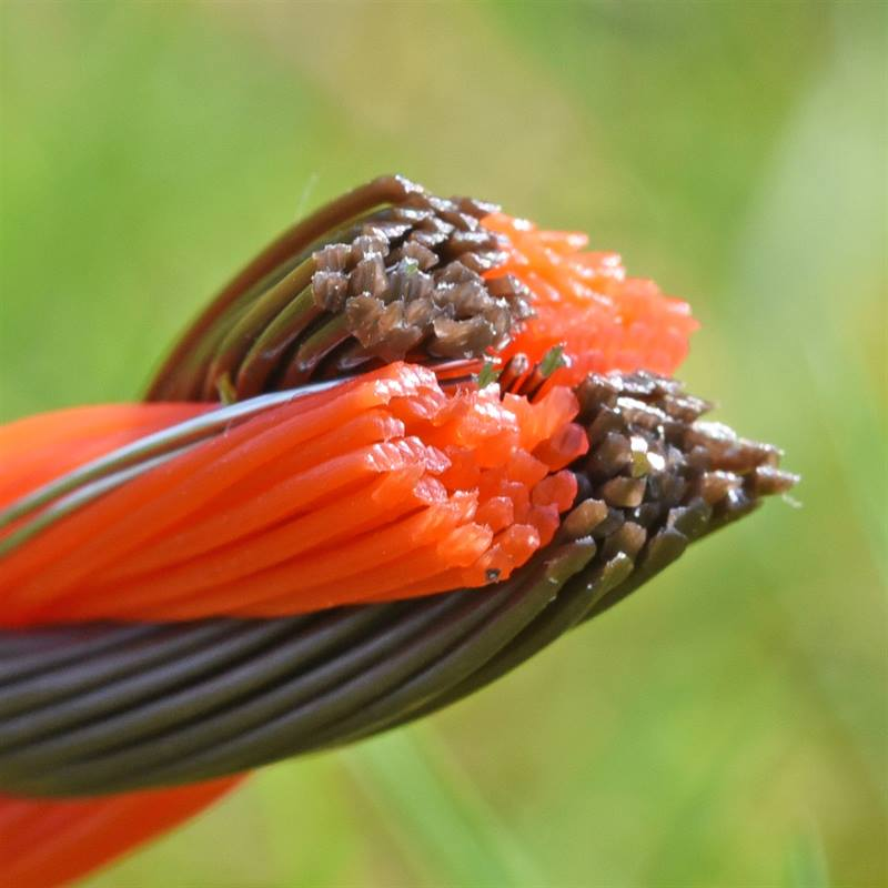 45584-VOSS.farming-Profiline-Weidezaunseil-Querschnitt-braun-orange.jpg