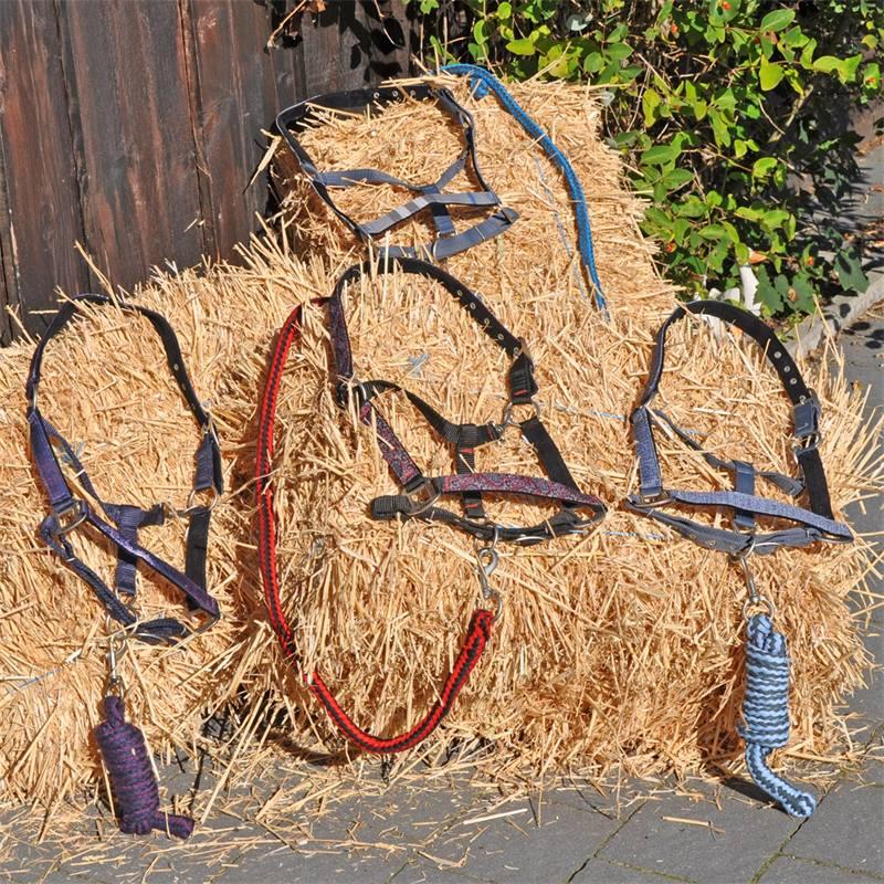 501032-2-luxe-halsterset-met-tas-qhp-paarden-ponys.jpg