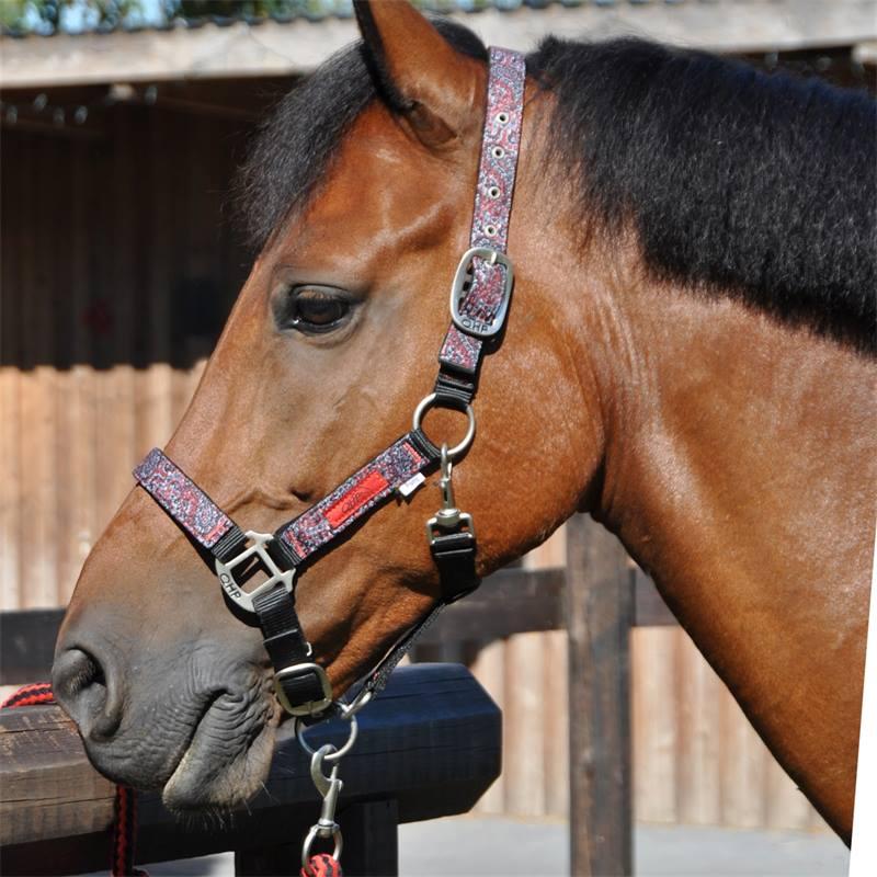 501032-8-luxe-halsterset-met-tas-qhp-paarden-ponys.jpg