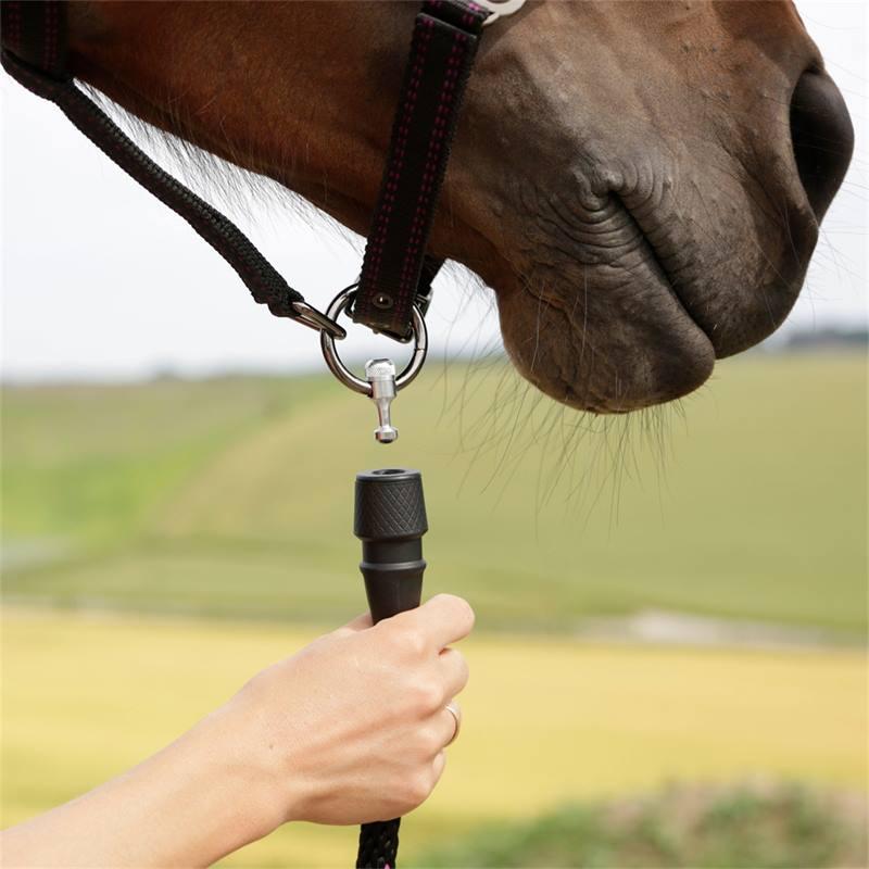501300-4-goleygo-v2-halster-voor-paarden-en-ponys-zwart-fuchsia-met-adapterpen.jpg