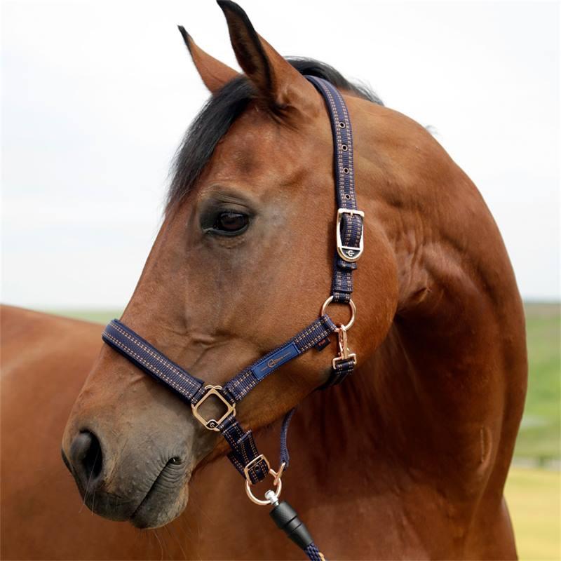 501310-3-goleygo-v2-halster-voor-paarden-en-ponys-blauw-karamel-met-adapterpen.jpg