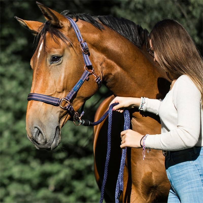 501310-5-goleygo-v2-halster-voor-paarden-en-ponys-blauw-karamel-met-adapterpen.jpg