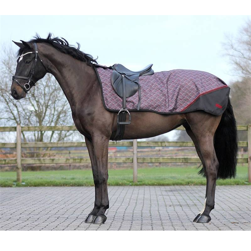 505352-2-ausreitdecke-turnout-luxus-fleece-qhp.jpg