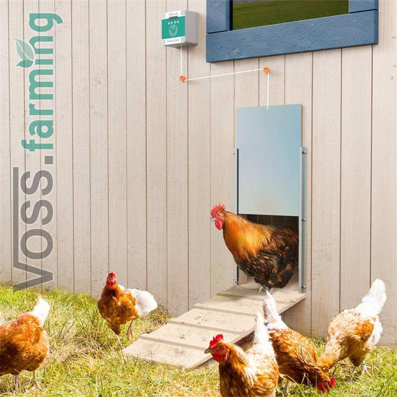 561856-voss-farming-automatisch-kippenluik-12.jpg