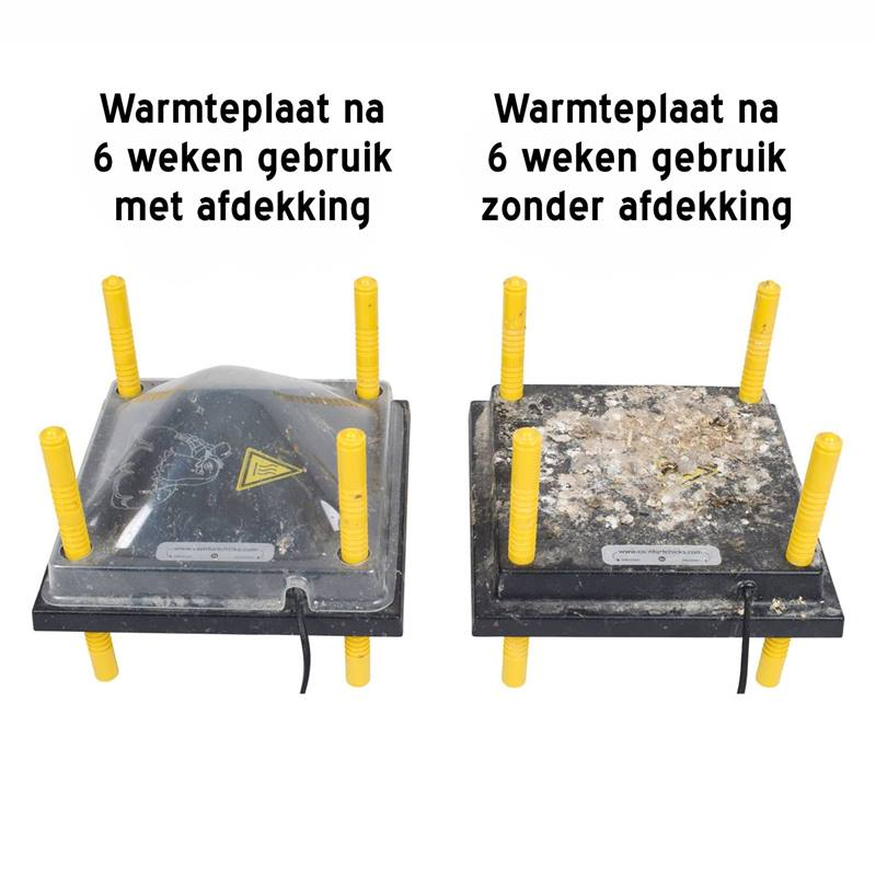 Waermeplatten-Brutgeraet-Kueken-Abdeckung.jpg