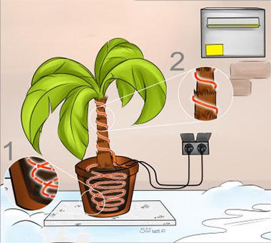 Gebruik als vorstbeschermingskabel bij planten en bomen